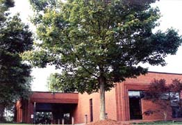 Peachtree Corners Branch Library
