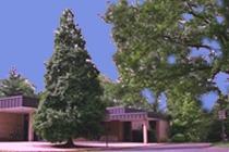Kensington Park Community Branch Library