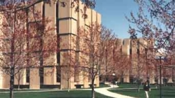 University of Chicago Library