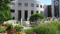 Waldo Library