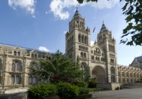 Natural History Museum Library