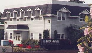 Black Diamond Library
