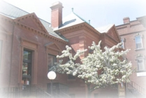 Springfield Town Library