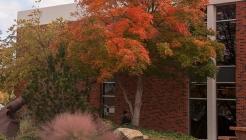 Cameron University Library