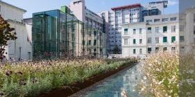 Medizinische Universitaet Graz