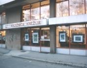 Knjižnica Knežija