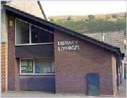 Ynyshir Library