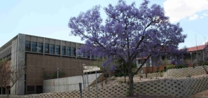 National Library of Namibia