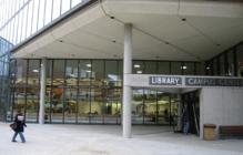 Amelia V. Gallucci-Cirio Library