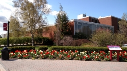 Saint Francis University Library