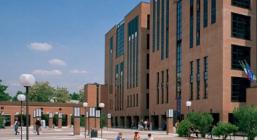 IULM Library